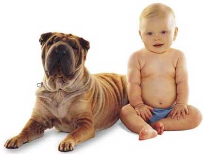 dog kids 04