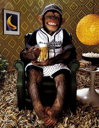monkey and beer