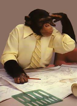 monkey office man